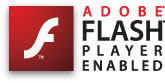 flash enabled logo